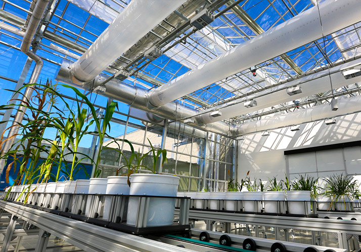 Innovation Campus greenhouse
